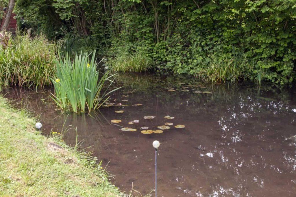 Hembury Pond